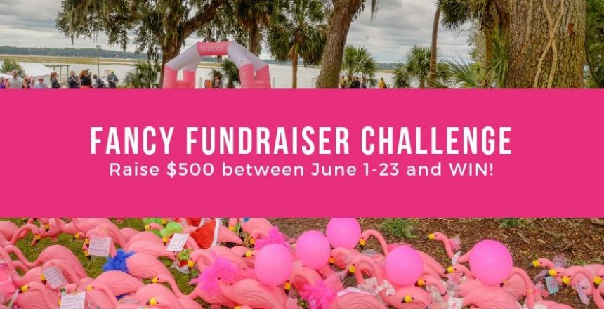 Fancy FUndraiser challenge